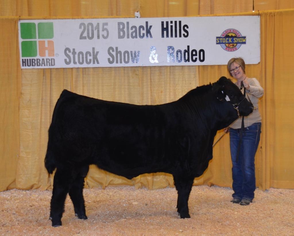 JBV Montana: Top 4 selling Bull at 2015 BHSS