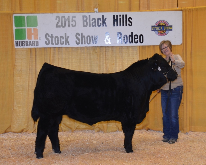 JBV Montana: Top 4 selling Bull at 2015 BHSS